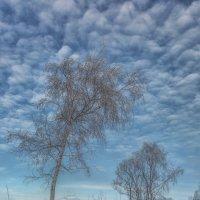 Зима в России :: Владимир Колесников