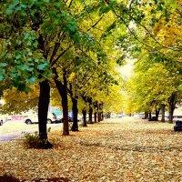 Что такое осень... :: Tatjana