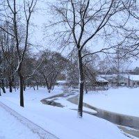 Ледяная река,снежные берега. :: zoja