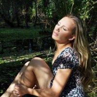 Купаясь в солнечных лучах.. :: Вероника Подрезова