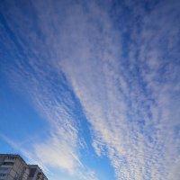 февральское небо :: Евгений Фролов