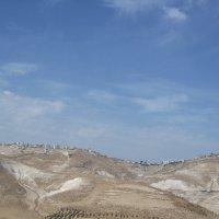 ландшафты Израиля :: Елена Шидловская