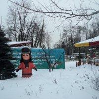 И ещё, один житель Антарктиды решил, поселиться в Люберецком парке! :: Ольга Кривых