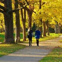 Есть в осени прекрасные мгновения... :: Sergey Gordoff