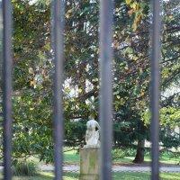 Сад Люксембург :: Фотограф в Париже, Франции Наталья Ильина
