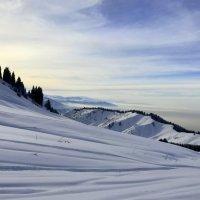 Небо и снежный покров в едином стиле. :: Anna Gornostayeva