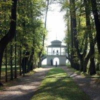 Главная аллея парка - липовая аллея завершается беседкой-гротом :: Елена Павлова (Смолова)