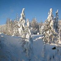 Зимние сталактиты :: Ольга