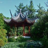 Loki Schmidt Garten (серия). Пагода-беседка :: Nina Yudicheva