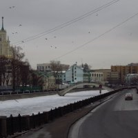 Моя Москва. Летят утки (и два гуся) :: Андрей Лукьянов