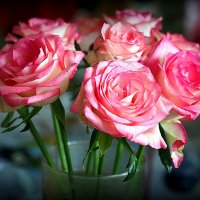 цветочные истории-букет для любимой :: Олег Лукьянов