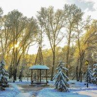 Вход в пушкинский парк :: юрий Амосов