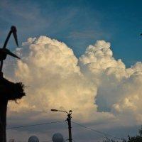облака :: Таня Харитонова