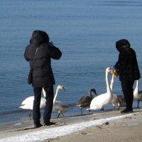 На пляже в феврале. :: Tatiana Golubinskaia