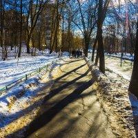Февральское потепление :: Игорь Герман