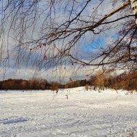 укрыто снегом озеро... :: Валентина. .