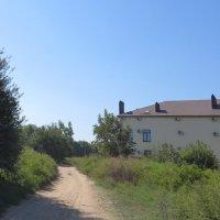 Дорога к центру посёлка :: Вера Щукина