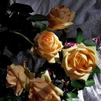 Дарите желтые цветы! :: Наталья