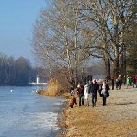 В теплый февральский день на озере .... :: Galina Dzubina