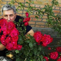 С Днем Валентина !!! :: Олег