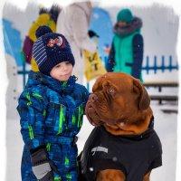 Воспитание любви у детей и собак-2 :: Alent Vink