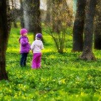 Фиолетовое настроение весны :: Анатолий Шулков