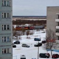 Из моего окна 5 этажа, со стороны дач едет поезд ж. дорога делит г.Северодвинск на город и квартал :: Михаил Поскотинов