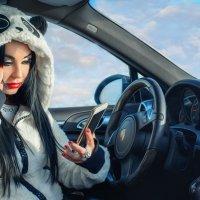 зима :: Елена Елизарова