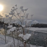 Солнечный взгляд  на Катунь :: Tatiana Lesnykh Лесных