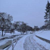 Зимние дорожки. :: zoja