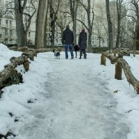 центральный парк :: Petr @+