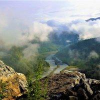 Гуляющий туман :: Сергей Чиняев