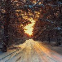 Зимние зарисовки - дорога в закат :: Aleksei Malygin
