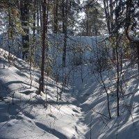 Перестают грустить в лесах овраги... :: Лесо-Вед (Баранов)