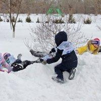 зимние забавы :: татьяна