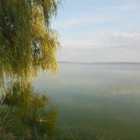 Белозерский лиман. Лето, ах лето... :: Ирина Диденко