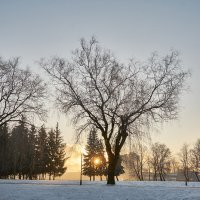 Зимние фото3 :: Genych