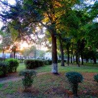 Вечер в осеннем парке... :: Тамара (st.tamara)