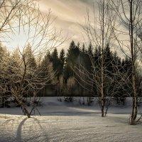 Комфорт по февральски ... :: Va-Dim ...