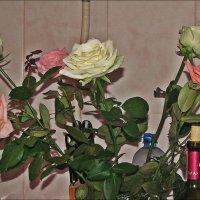 После праздника :: Нина Корешкова