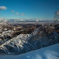 Ясный зимний денек :: Артём Удодов