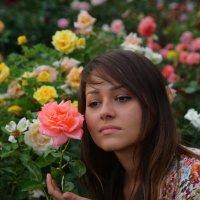 Наши цветы :: М. Дерксен Derksen