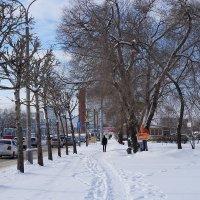 По свежему снегу... :: Екатерина Торганская