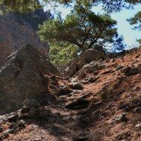 Ущелье Agias Irini, Крит :: Владимир Брагилевский