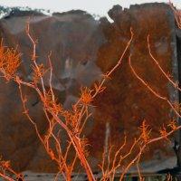 ржавая зима..... :: Ирэна Мазакина