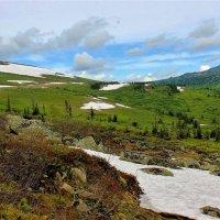Июнь в горах :: Сергей Чиняев