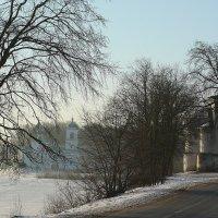 Морозное утро. :: Светлана Агапова
