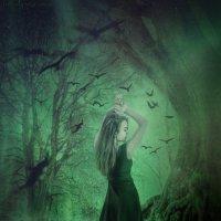 Таинственный лес :: Евгения Мартынова