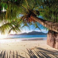 Tropical island :: Lucky Photographer