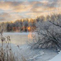 Морозное утро. :: Анатолий 71